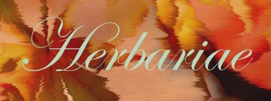 Erboristeria Herbariae